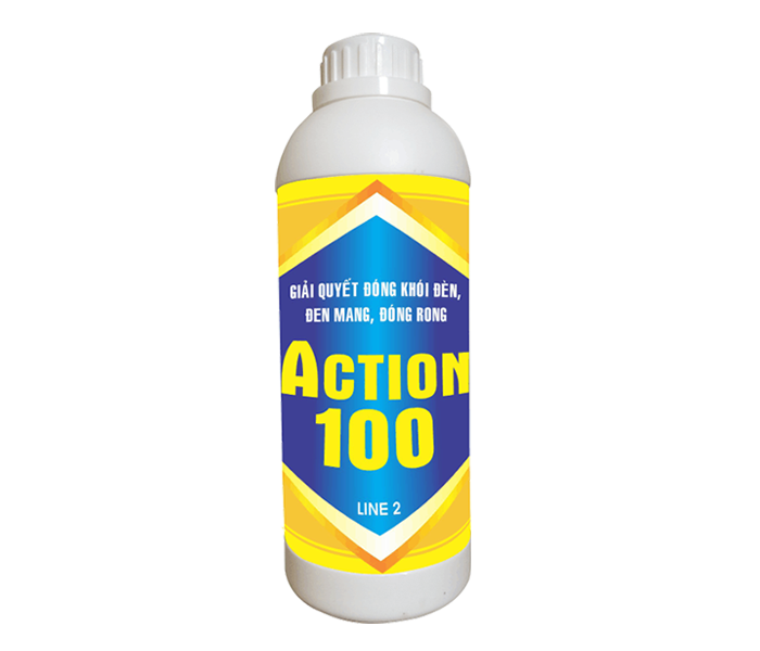 ACTION100